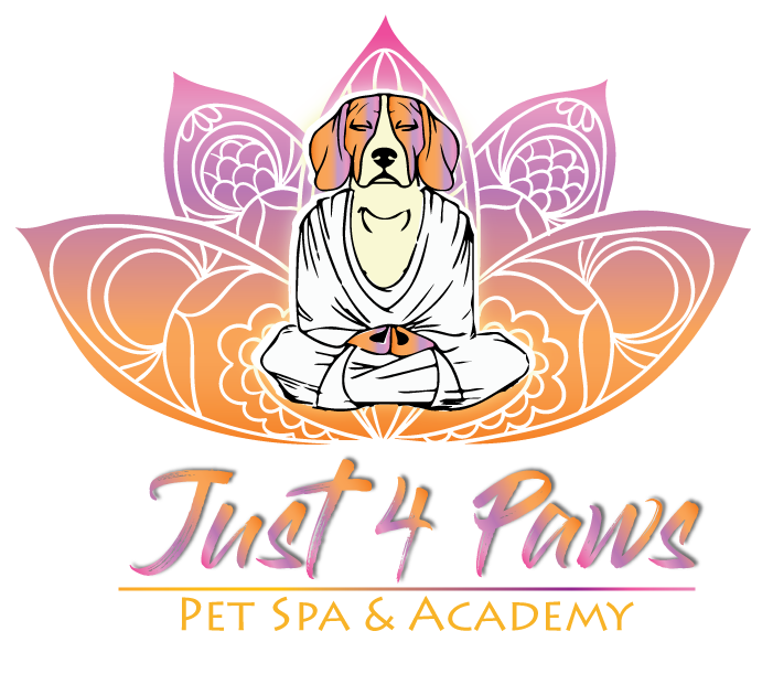Just 4 Paws Pet Spa